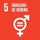 Desarrollamos programas específicos como Poderosas y colaboramos en proyectos como Shemakes o Poderosas FECYT que ayudan a familiarizar a las niñas y mujeres con el uso de la tecnología promoviendo su empoderamiento y reduciendo la brecha de género.