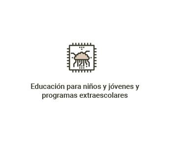 Educación para niños y jóvenes y programas extraescolares